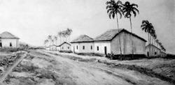 Colonia de Ibicaba