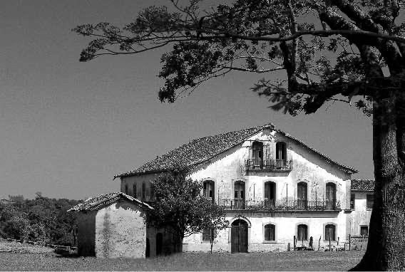 Fazenda Angelica Rio Claro