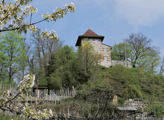 Niederurnen Castel