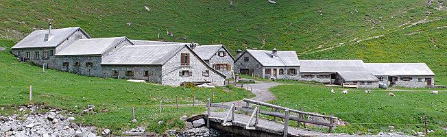 Luchsingen Alp Bösbächi