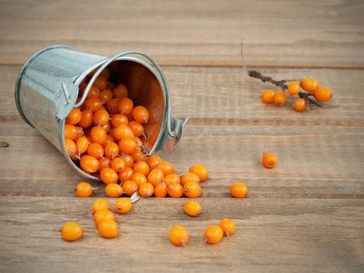The Orange Miracle