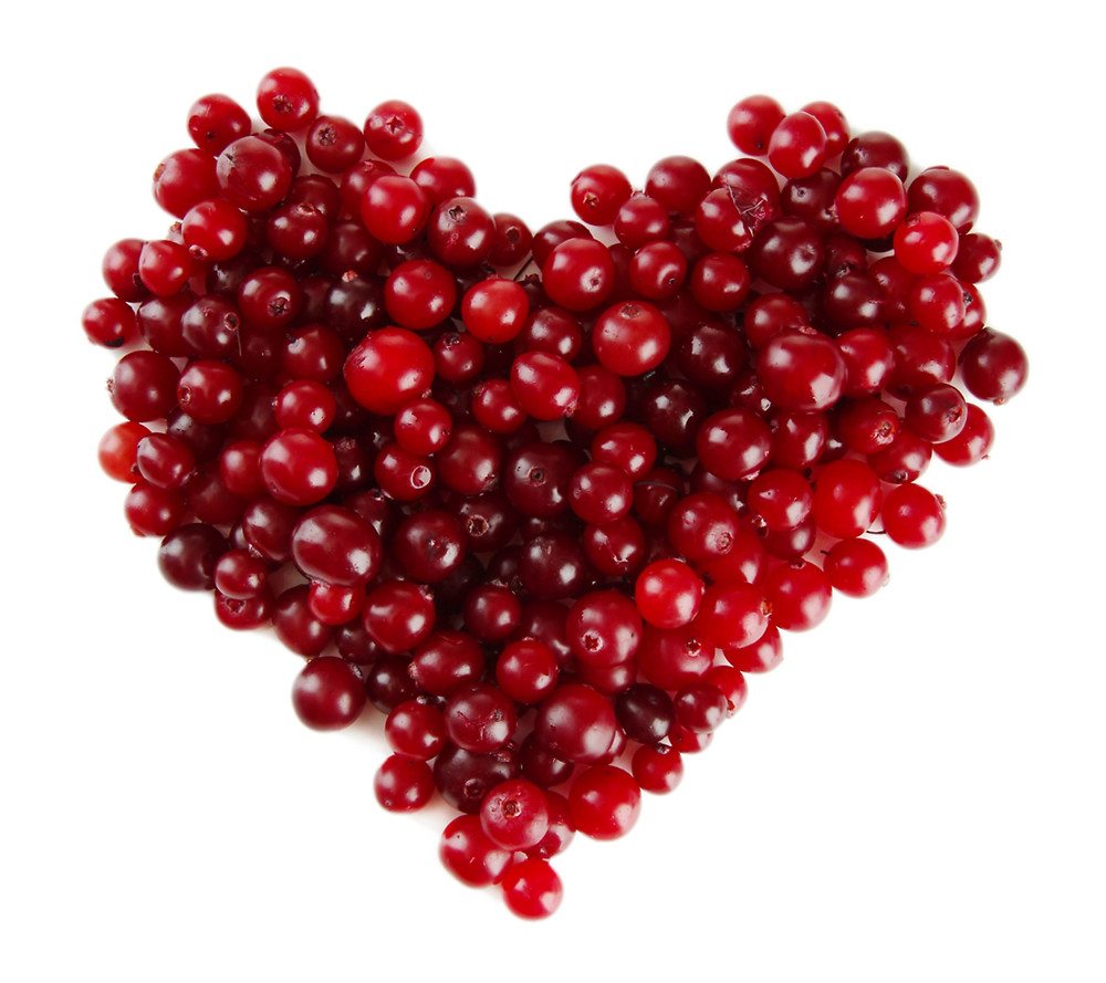 Ripe red cranberries, isolated on white .jpg