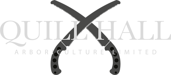 Quill Hall Logo Black.png