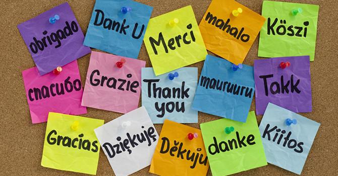 Gratidão, pratique diariamente