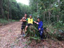 Jungle runs