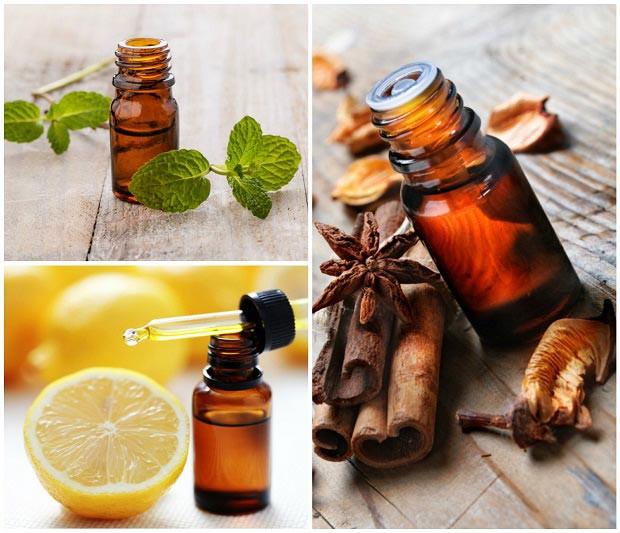 5 Air Fresheners Using Essential Oils