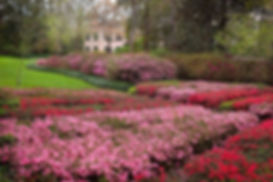Azalea-Trail-river-oaks-houston-apartmen