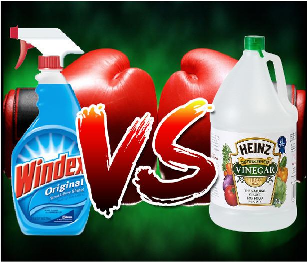 Windex (Original)   vs.     Heinz Vinegar