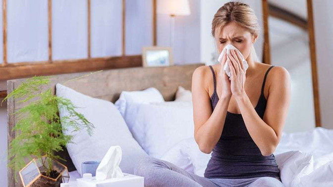 Allergic to Your House? How to Prevent Indoor Allergies