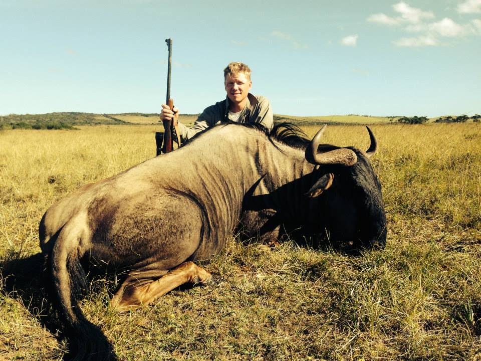 Blue Wildebeest Marshall 2014