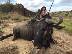 Erin Fitzsimmons Blue Golden Wildebeest 2016