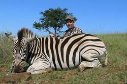 Mike Kingsley Zebra 2014