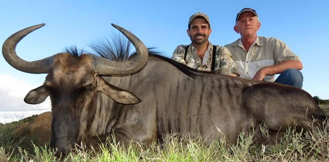 Blue Wildebeest Austin Dempsey 2015