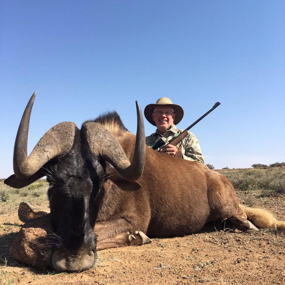 John Melvin Black Wildebeest 2016