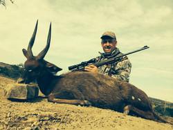Bushbuck Don Scott
