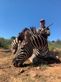 Garland Hamilton Zebra 2021