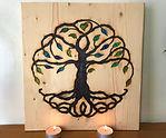 Big Tree of Life (2).JPG