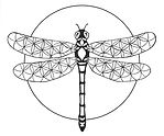 Flower of Life Dragonfly