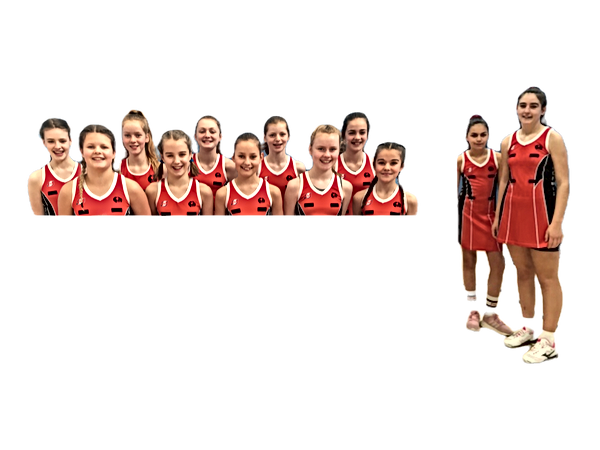 netball%20tall_edited.png
