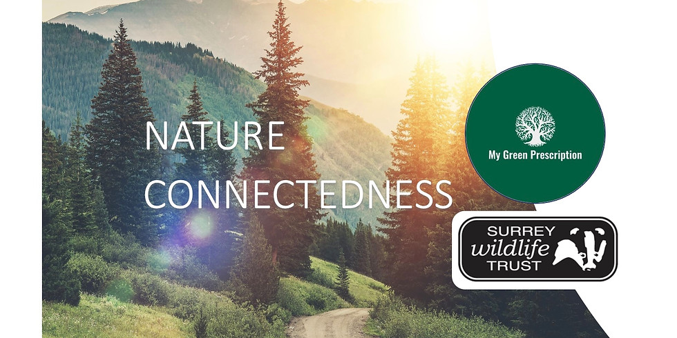 Nature Connectedness for Wellbeing with Surrey Wildlife Trust & MGP (week 3)