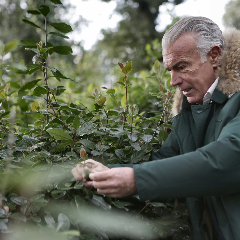 Foraging & Natural Knowledge with MGP
