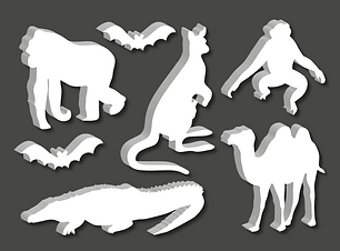 collection_animaux-22.png