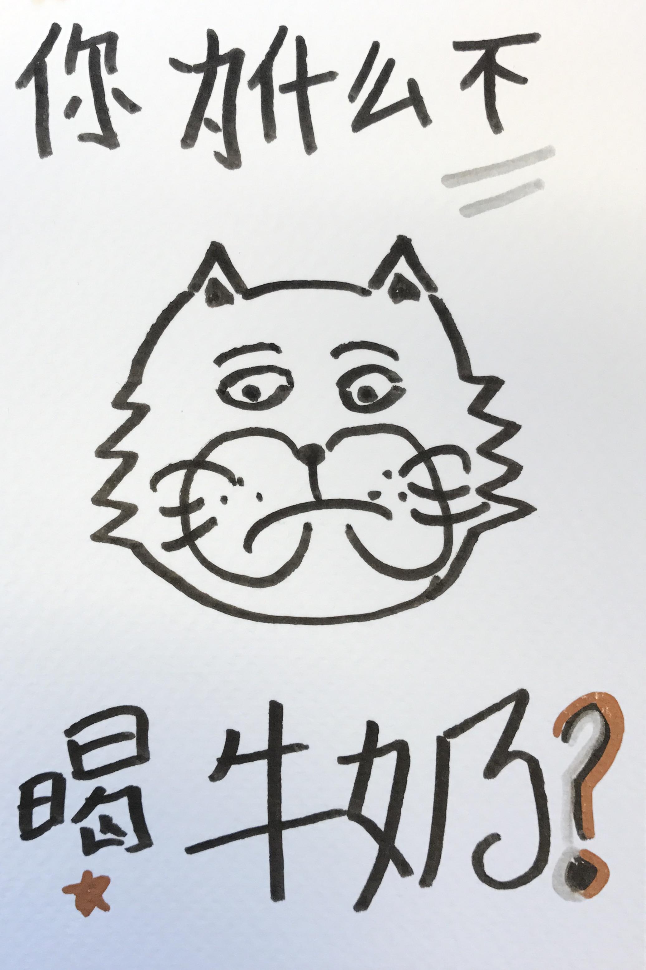 你为什么不喝牛奶 汉语 中国 猫子 描く かわいい コミックス ペン art drawing comic manga cartoon ink kawaii