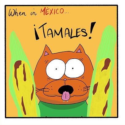 Kittens Gobble through Mexico pt1.JPG