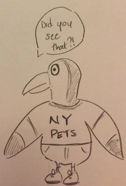 Sporty Gull