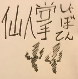 シャボテン Cactus 日本語 書道 ペン marker graffiti ink writing calligraphy art artwork