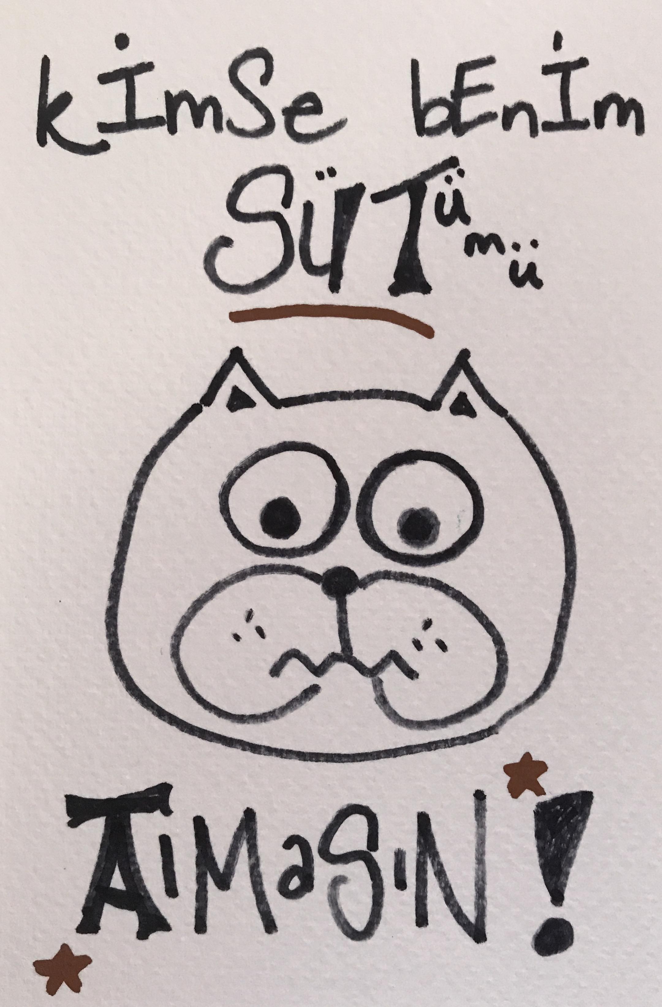 Kimse benim sütümü almasın Türkçe kedicik かわいい ドイツ語 仔猫 描く コミックス comics kitten kätzchen drawing ink