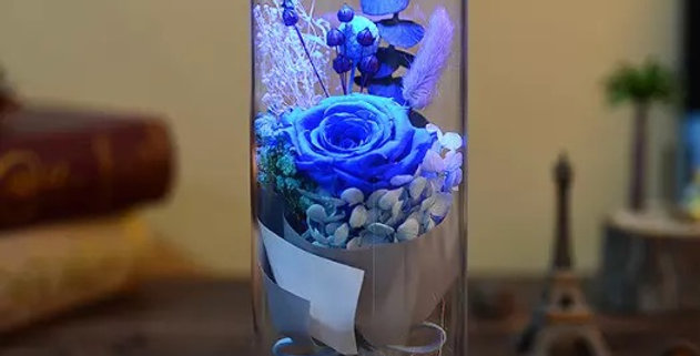 One and Only - Royal Blue Rose