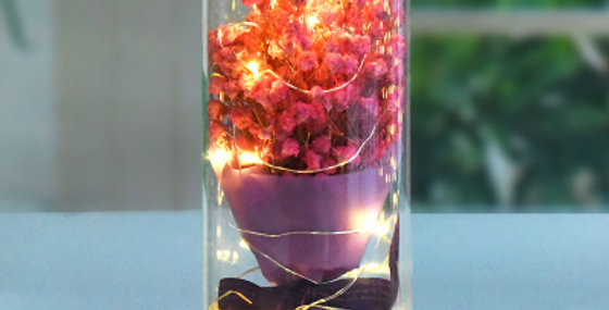 LED Pink Baby's-Breath (TOP LED)
