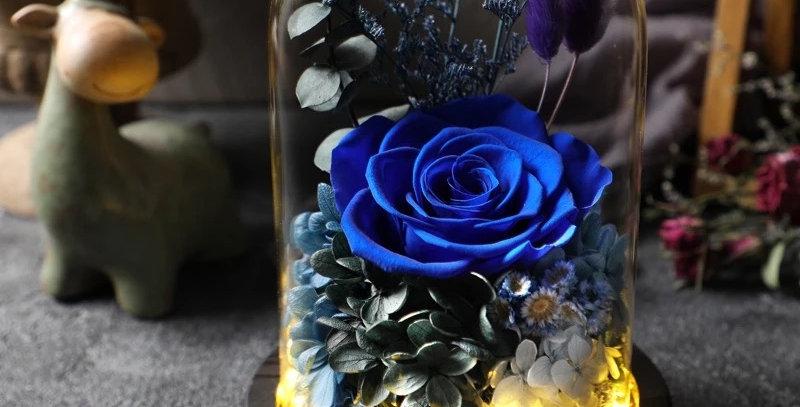 Everlasting Love - ROYAL BLUE