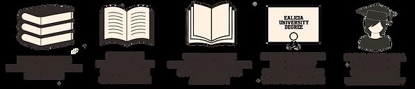 Curso-Especialización-eAlcia-Universit