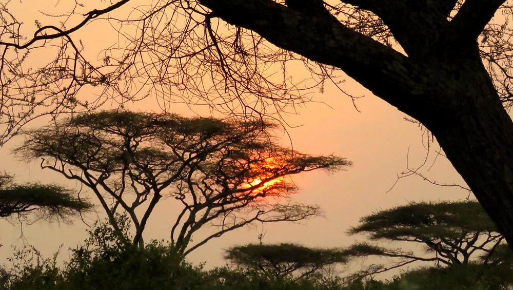 tanzanian african sunset