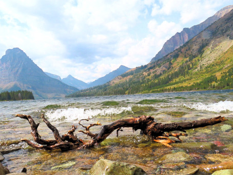 Montana and Glacier National Park