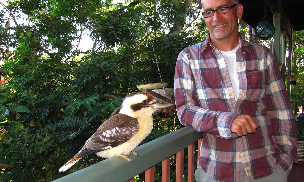 kookaburra mossman gorge bed and breakfast