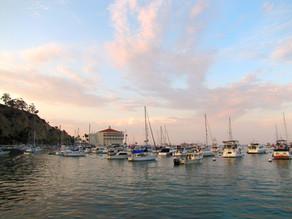 Best Activities on Santa Catalina Island, CA