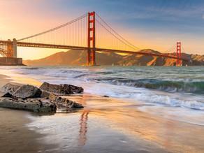 Exploring San Francisco and the Redwood Coast