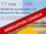 20200517_annulé.png