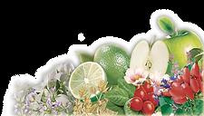 bitki meyve çayı