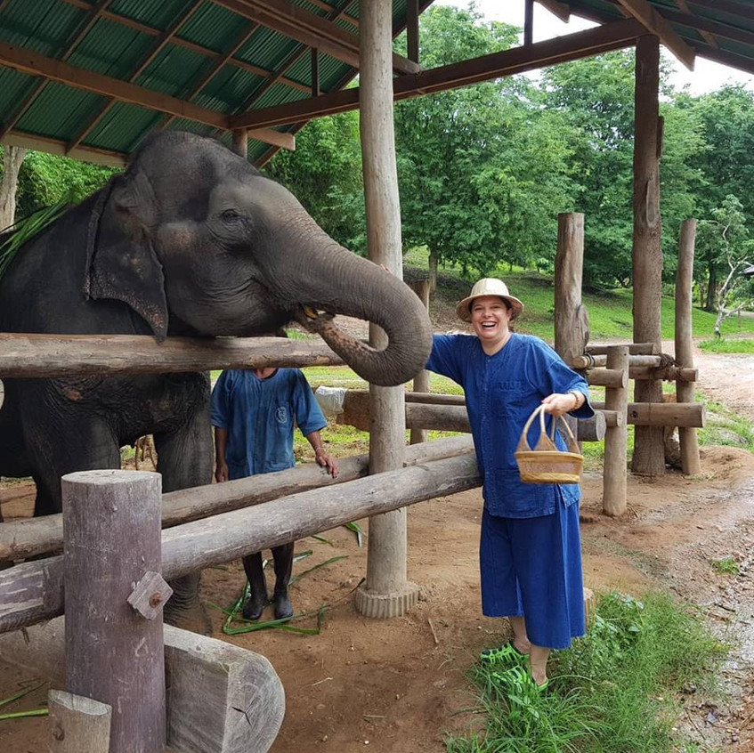 Thai Elephant 8
