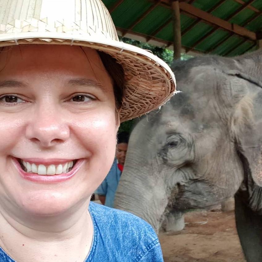 Thai Elephant 6