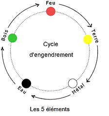 5_éléments_cycle_d'engendrement_2.png
