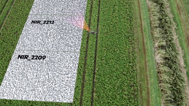 KPN 5G Field Lab Rural Drenthe