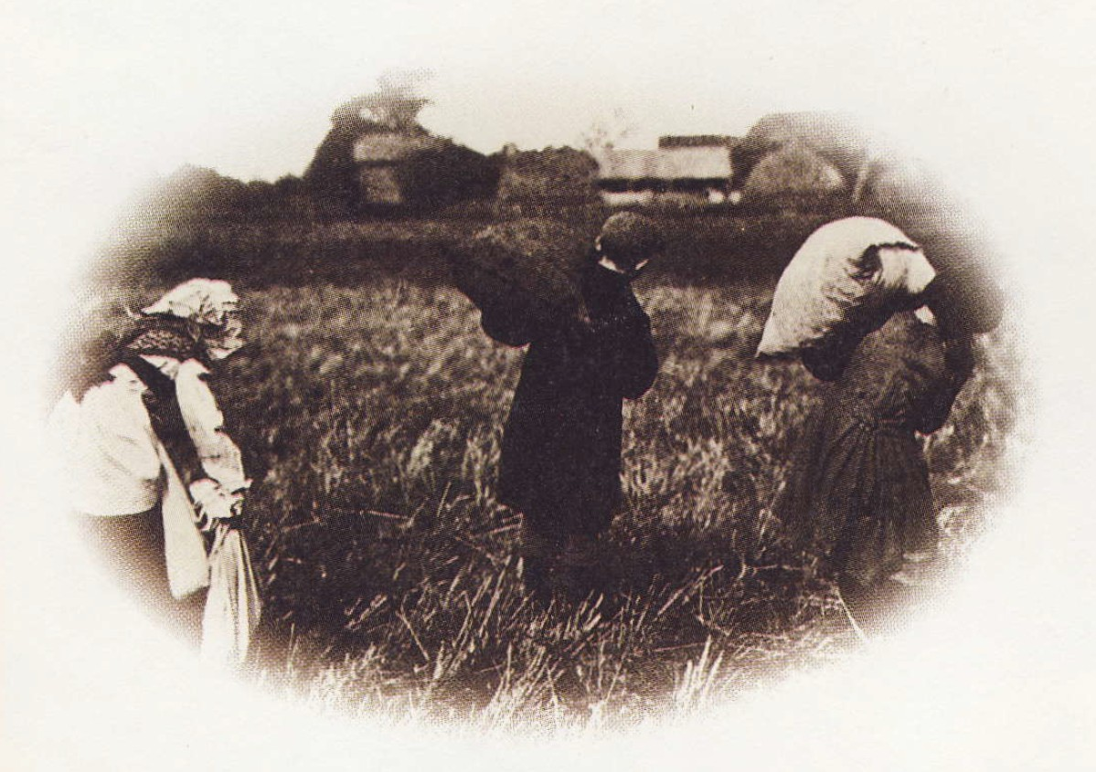 Children Working in the Field 3