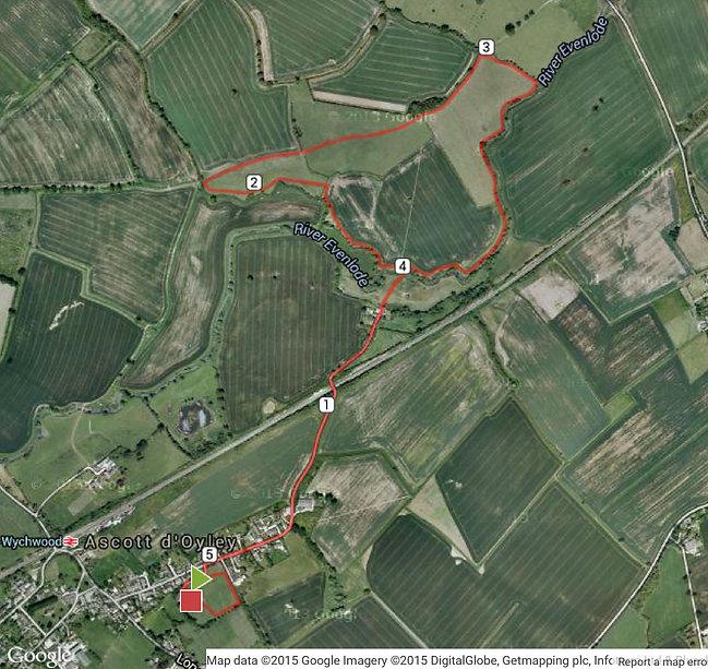 AVC Run 2019 5k Map.jpg