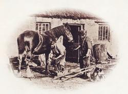 Men Working in the Field 4