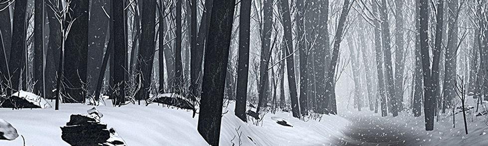 01 Jan - winterwood 2.jpg
